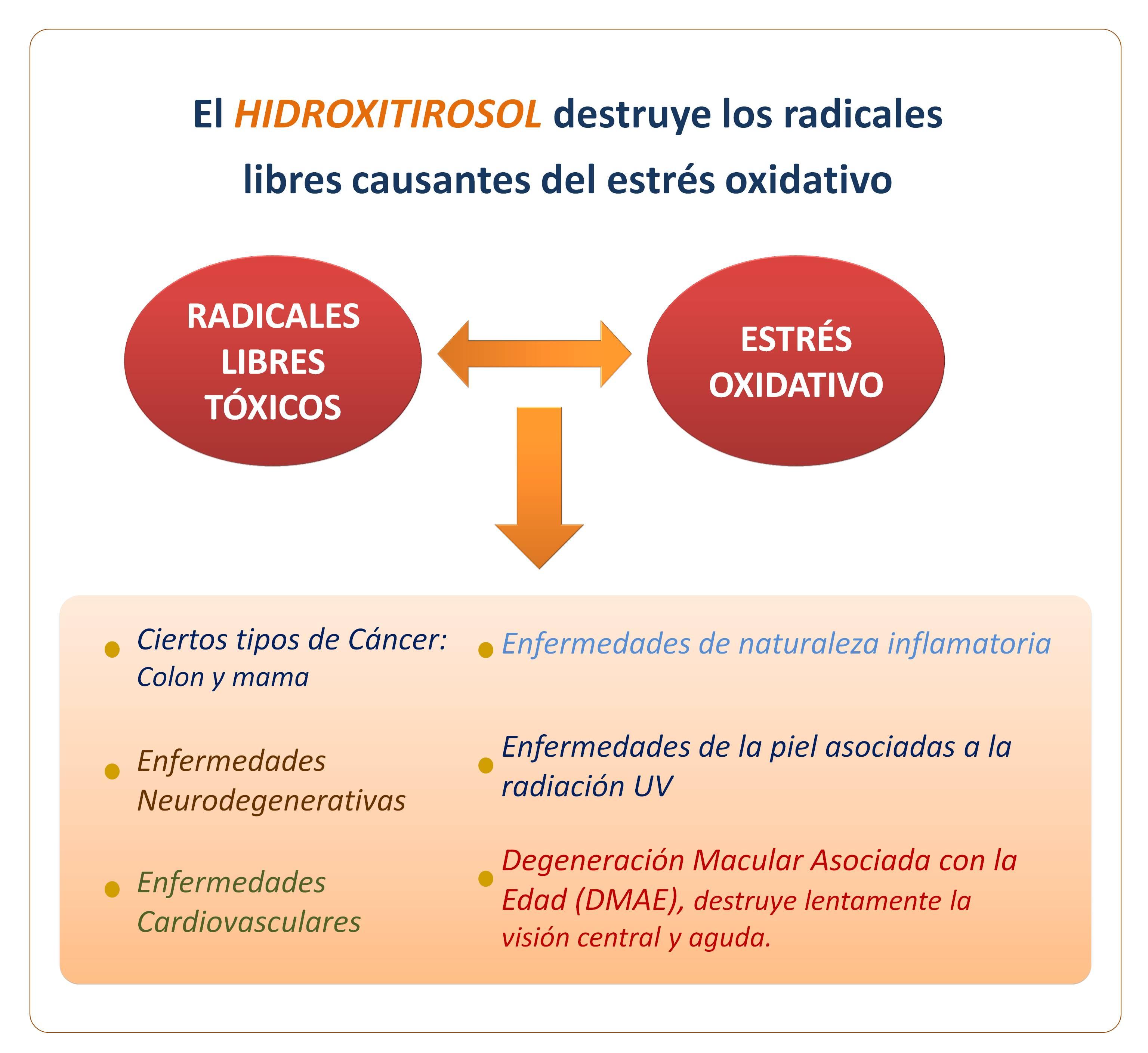 El hidroxitirosol posee multiples beneficios para la salud