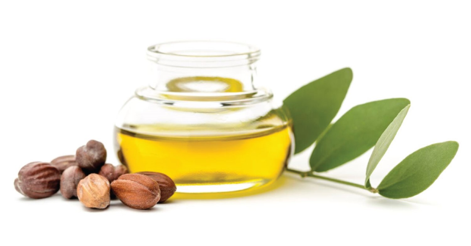 Jojoba, a natural cosmetic, intelligent and complete.