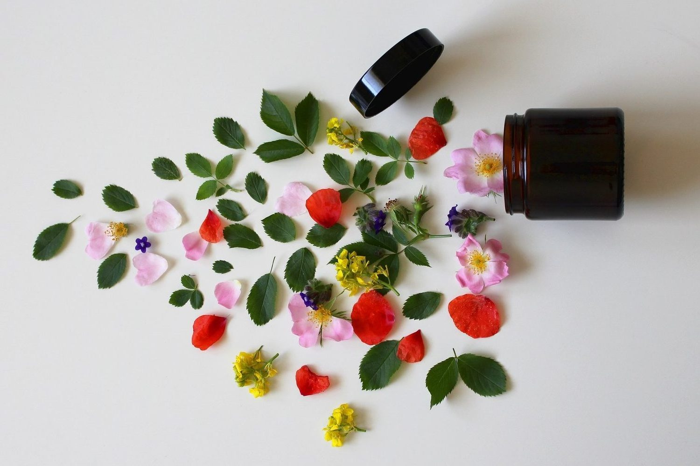 Ingredientes vegetales para formular cosméticos naturales.
