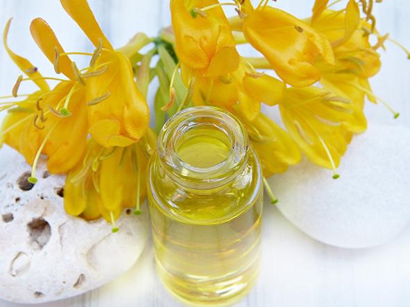 el aceite de jojoba es un aceite antimicrobiano